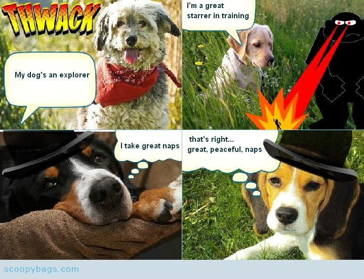 Fetch's Super Scoopy comic: 'My dog's an explorer!' on www.scoopybags.com