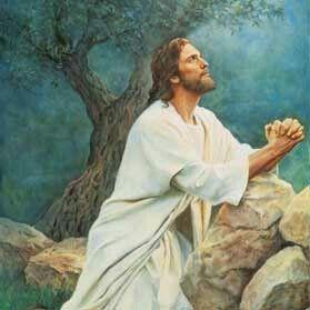 Love ALLAH and JESUS