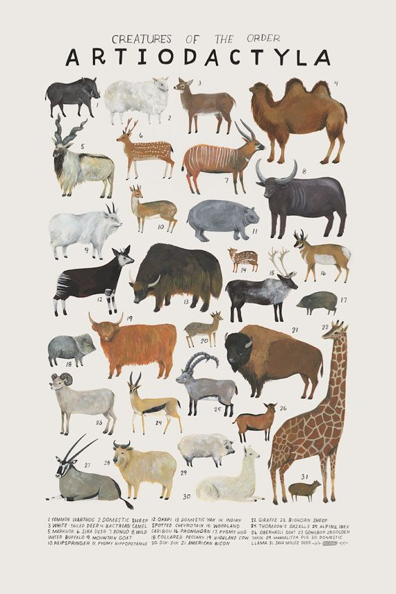 Criaturas+de+la+orden+Artiodactyla-vintage+inspiraron+poster