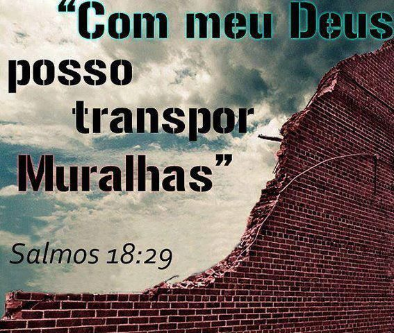 Salmos 18 1 Eu te amo, ó Senhor, minha força. 2 O Senhor é a minha rocha, a minha fortaleza e o meu libertador; o meu Deus é o meu rochedo, em quem me refugio. Ele é o meu escudo e o poder que me salva, a minha torre alta. 3 Clamo ao Senhor, que é digno de louvor, e estou salvo dos meus inimigos. 4 As cordas da morte me enredaram; as torrentes da destruição me surpreenderam. 5 As cordas do Sheol me envolveram; os laços da morte me alcançaram. 6 Na minha aflição clamei ao Senhor; gritei por…
