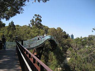 Jan 1 - Kings Park, Perth, Western Australia