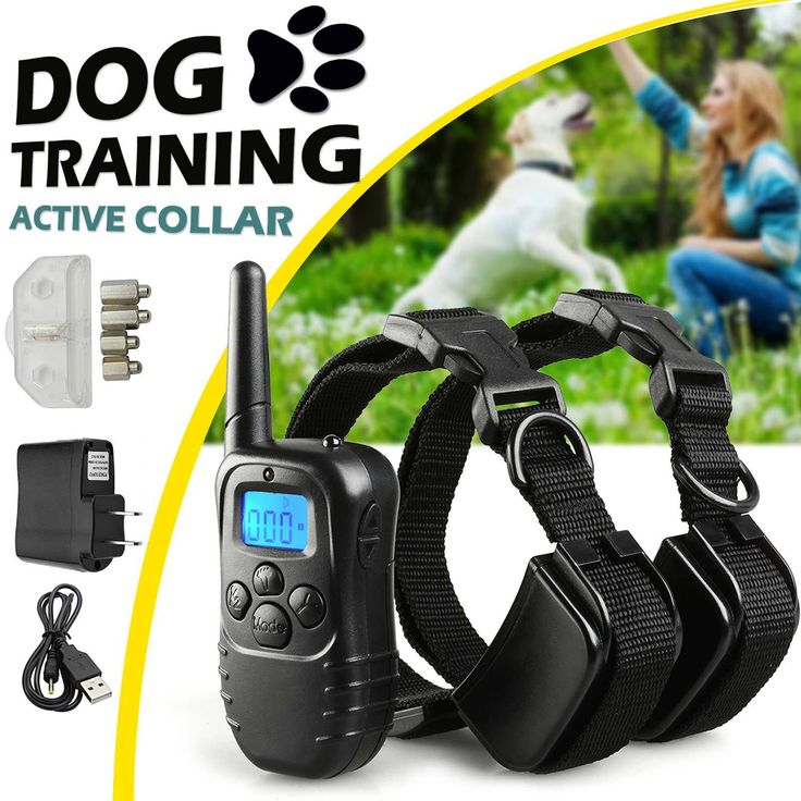 Description : Pet trainer Rechargeable training Collar has been proven safe, reliable, comfortable, humane training and effective for all pet over 8 p... #collars #supplies #head #leashes #shock #electric #training #rechargeable #collar