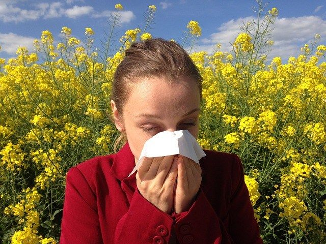 Natural Home Remedies for Pollen Allergy What's a Pollen Allergy?  Pollen is among the very frequent reasons for allergies in America.  In individuals with pollen allergies, the immune system starts to produce compounds to fight against the pollen and incorrectly identifies the benign pollen as a dangerous intruder. This really is called an allergic reaction, as well as the particular form of pollen that causes it's called an allergen