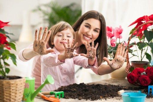 5 идеальных растений для ребёнка. Озеленение детской комнаты требует осторожного и взвешенного подхода, ведь, в отличие от всех жилых помещений, в детской можно размещать только те растения, которые обладают определенными полезными характеристиками. Чтобы наполнить детскую красочными культурами и приобщить ребенка к уходу за ним, нужно тщательно выбирать кандидатов из наиболее дружелюбных комнатных обитателей. Какими должны быть комнатные растения для детской комнаты Растения очень важны и…