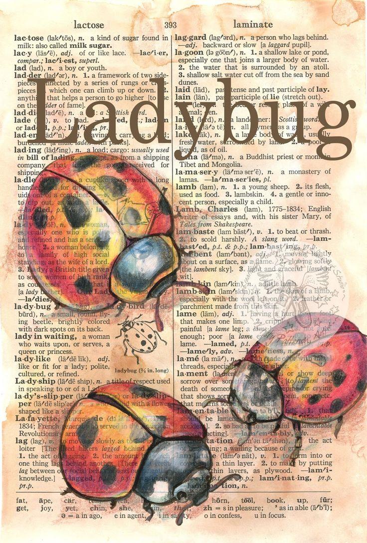 flying shoes art studio: LADYBUGS & BEETLES
