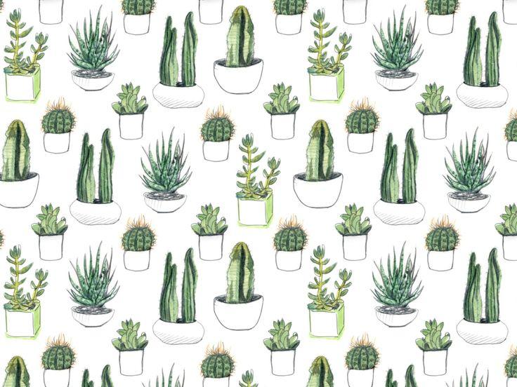407 best ? Nature: Cacti || Succulents || Plants || Herbs ? images ...