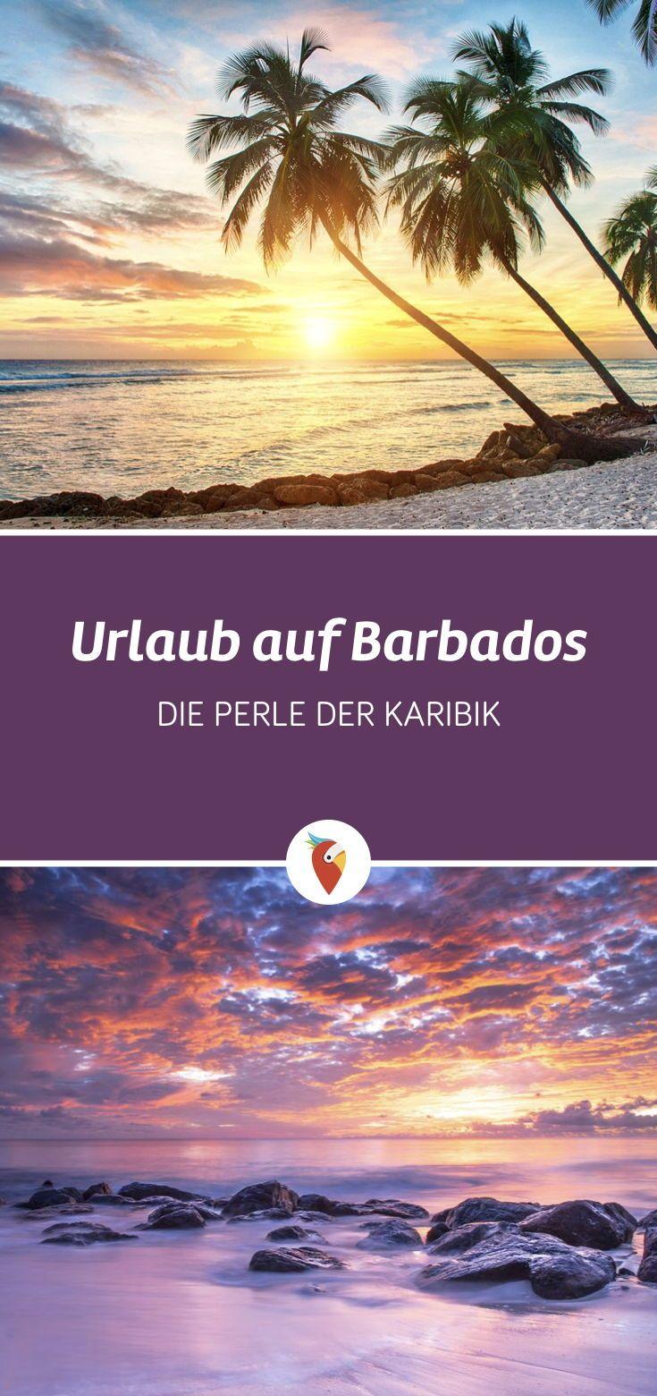 Urlaub Auf Barbados Entspannt Auf Der Karibikinsel Karibik Urlaub Barbados Urlaub Karibikinseln