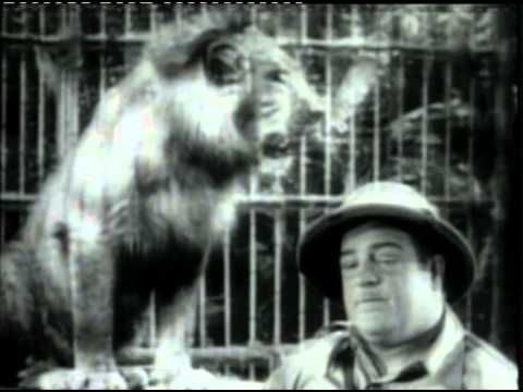 Abbott and Costello - Africa Screams (1949) Watch Full Version Streaming Online