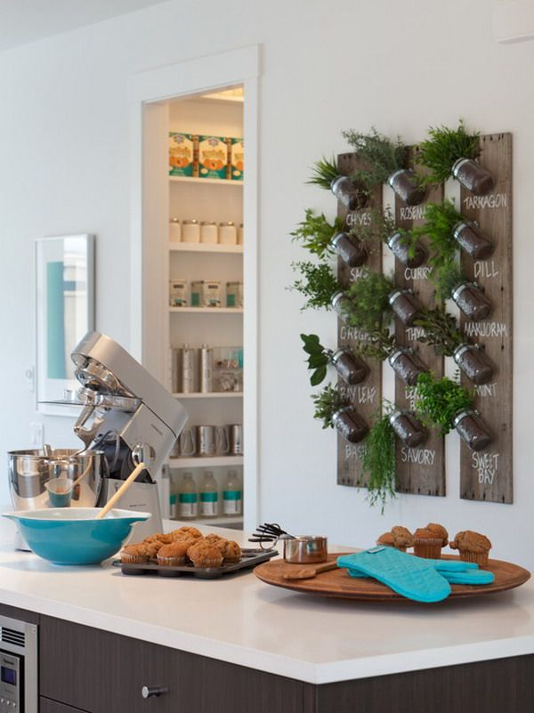 Stay Close to Nature By Having Kitchen Plants - http://www.amazinginteriordesign.com/stay-close-to-nature-by-having-kitchen-plants/