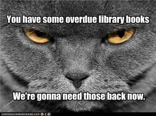 Catty librarian