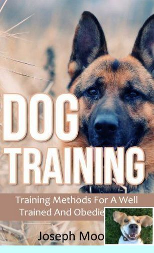 Clicker Training Kit Dogtraining And Puppy Training Lincoln Park