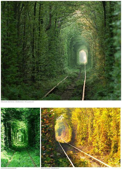 Tunnel of Love in Klevan, Ukraine uploaded by www.catamkla.com