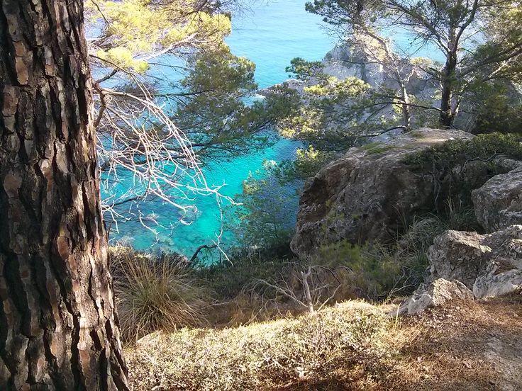 hiking in banyalbufar - Google-søk