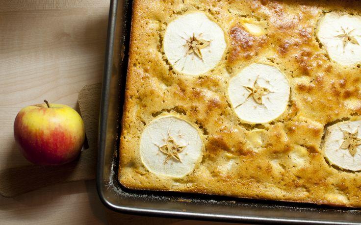 Máslová tvarohová buchta s jablky