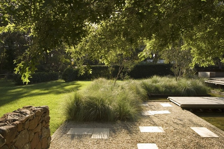 Nice light.Garden by #peterfudge