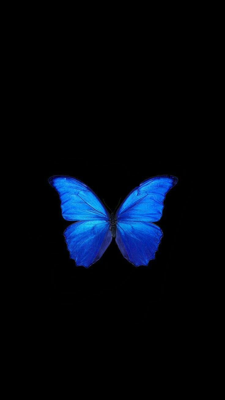 Pin by Людмила ♥ on iPhone / iPad wallpapers | Butterfly ...