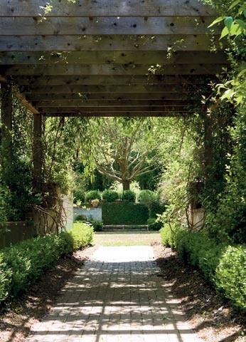 Side driveway...: Flanneri O' Connor, Trellis Arbors, Gardens Architecture, Milledgevil Gardens, Parties Gardens, Driveways Arbors, Milledgevill Gardens, Gardens And Guns, Landscape Ideas