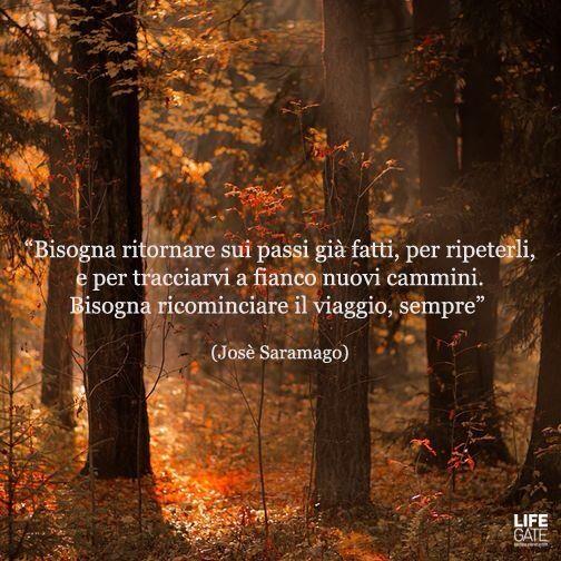 By lifegate #josesaramago #futuro #edarlingitalia