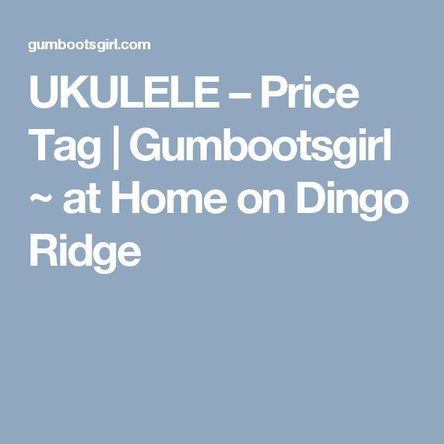UKULELE – Price Tag | Gumbootsgirl  ~   at Home on Dingo Ridge