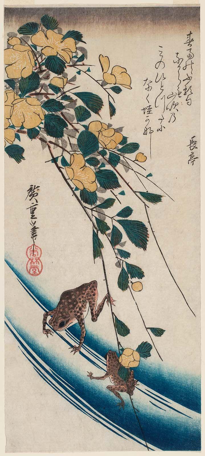 「frog hiroshige pinterest」の画像検索結果