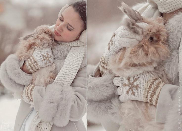 кролики)