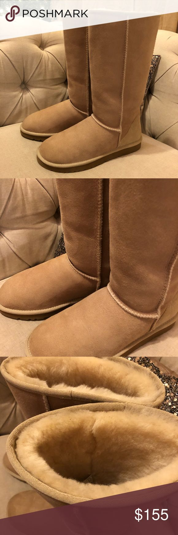 BRAND NEW AUTHENTIC UGG BOOT Selling my whole ugg collection!! Take advantage they were only worn a handful of times each!   Brand new never worn!! Amazing boot! No stains or issues. The color goes with everything. Bought by me from Nordstrom. All my uggs were bought from Nordstrom UGG Shoes Winter & Rain Boots