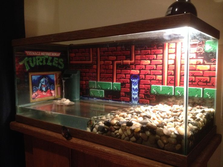Pet turtle...  Teenage Mutant Ninja Turtles aquarium for turtles