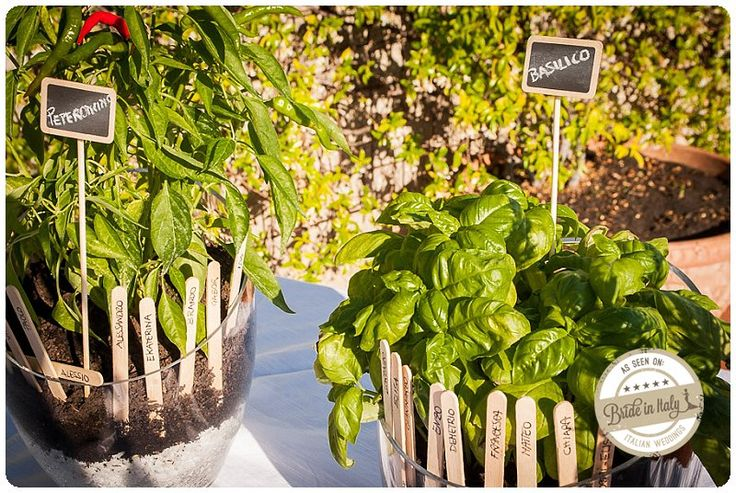 Herbs pots, some popsicle sticks, a few tiny chalkboard... your super-cool rustic seating chart is served! Ph Qualcosa di Blu http://www.brideinitaly.com/2013/11/qualcosadibludiydress.html #italianstyle #diy #rustic #wedding