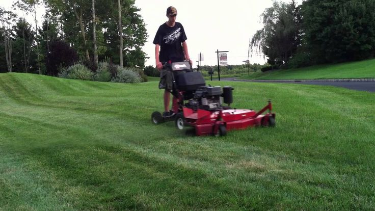 Mowing lawn part 1 lawn mower mowing lawn