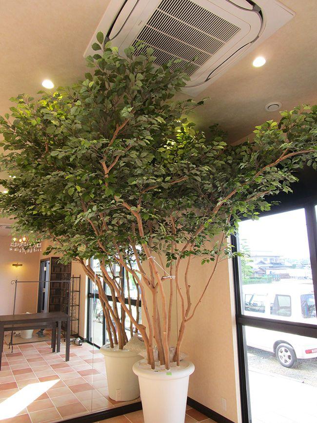 2015年7月 香川県 美容室様 人工樹木 3m
