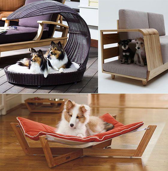 10 Cool Pet Furniture Designs For Pet Lover