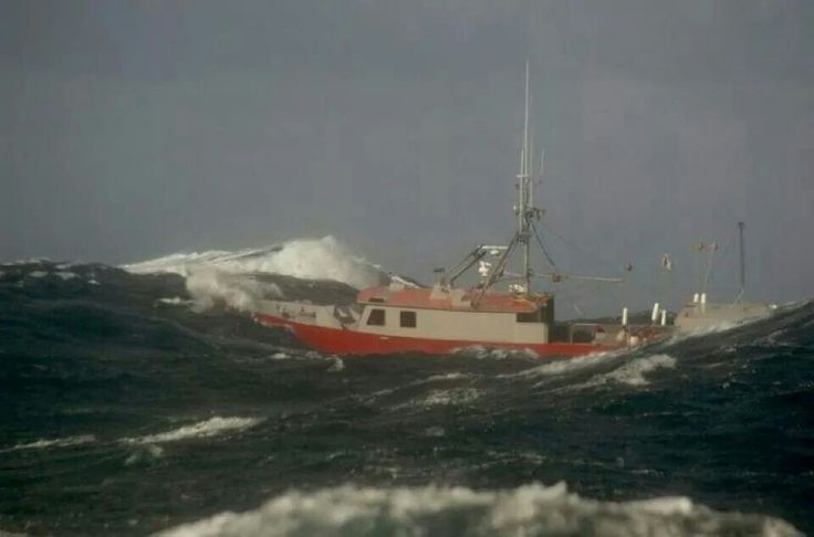 1000 images about montauk commercial fishing fleet on for Montauk ny fishing