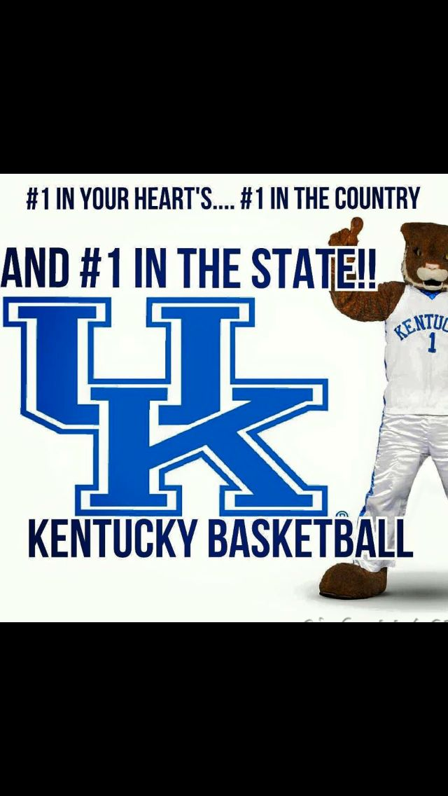GO BIG BLUE   on Pinterest   Nerlens noel  Cats and John calipari