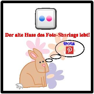 Trotz #bunny