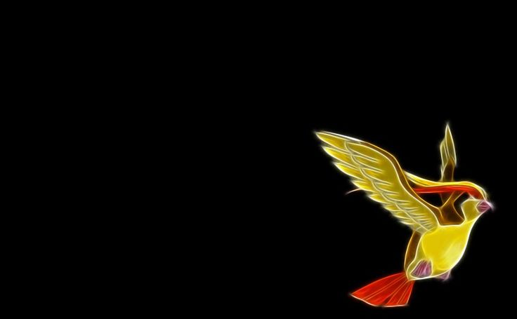 Pokemon Pidgeot HD Wallpaper