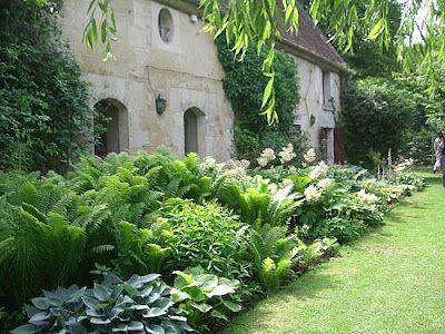 On verra au jardin...: Plantes d'ombre...