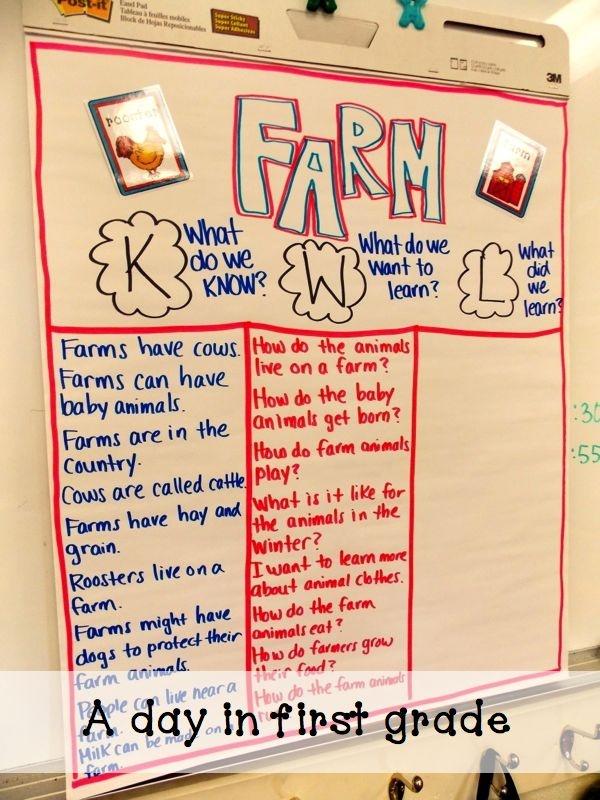 A day in first grade: Farm Fun