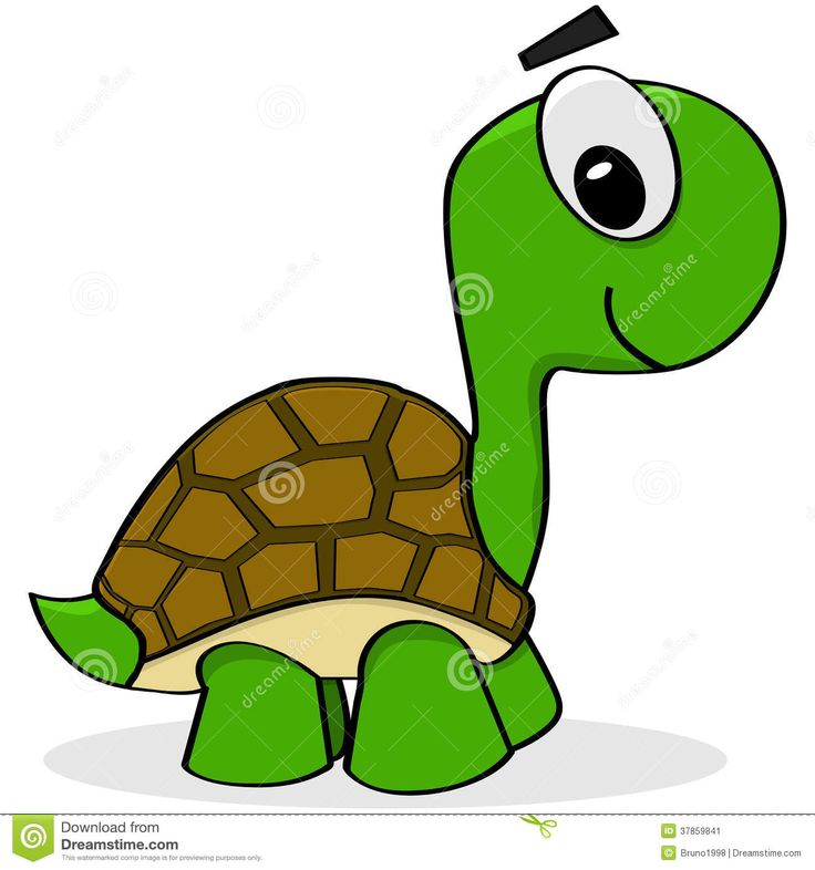 Best 25 cartoon turtle ideas on pinterest donut pictures cute turtle tattoo and turtle tattoos - Clipart tortue ...