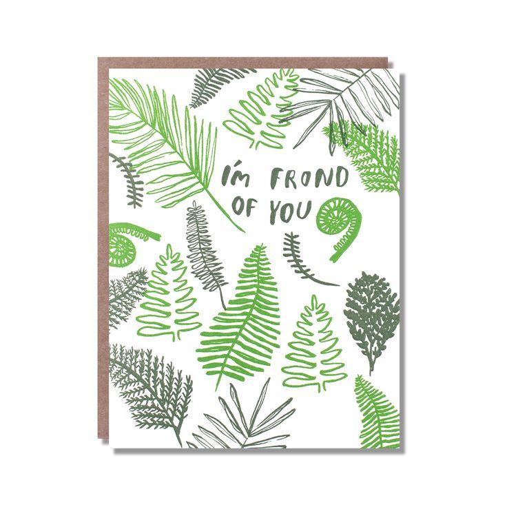 fern friendship