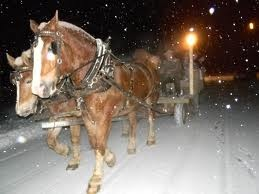 Kingfield First Friday Artwalk takes Artwalkers around by horse drawn sleigh during snow months.