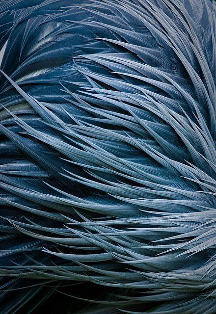 les 25 meilleures id es concernant peintures bleues d 39 ardoise sur pinterest murs bleu ardoise. Black Bedroom Furniture Sets. Home Design Ideas