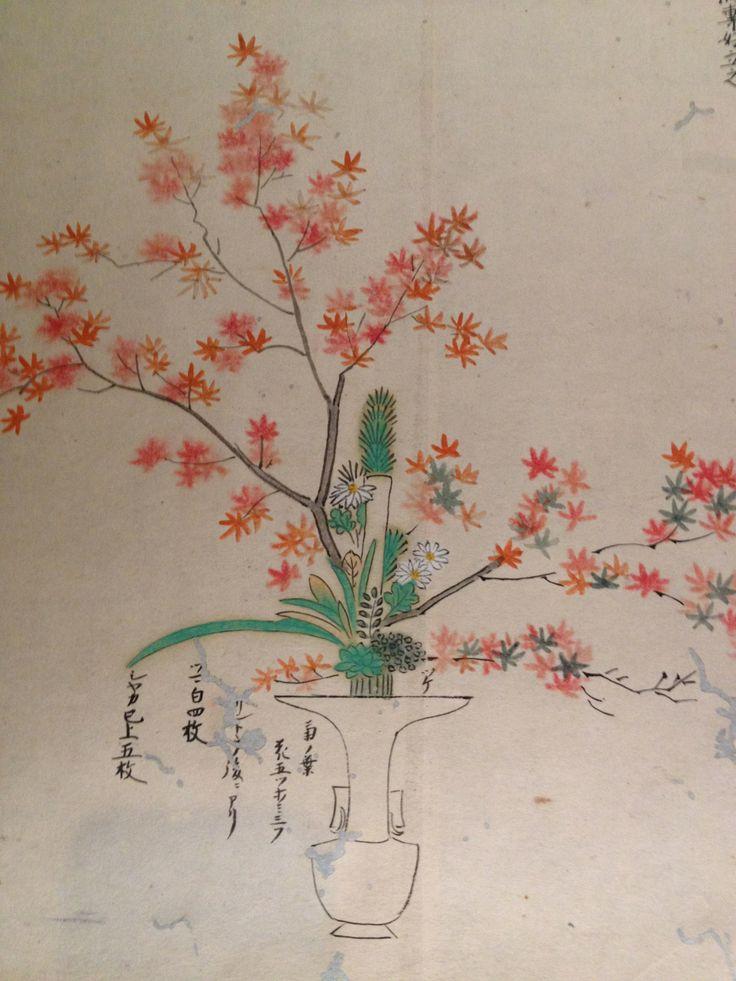 Ikebana drawing manuscript 4 from Kyoto Museum