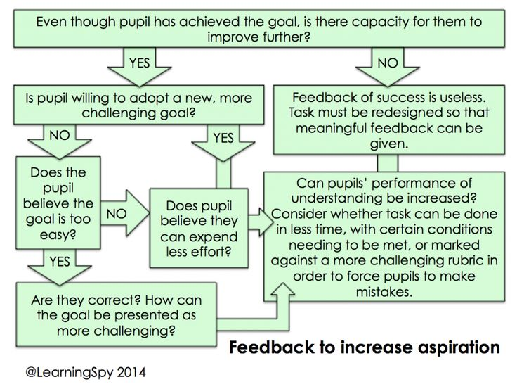 Getting feedback right Part 4: How can we increase pupils' aspiration? - David Didau: The Learning Spy