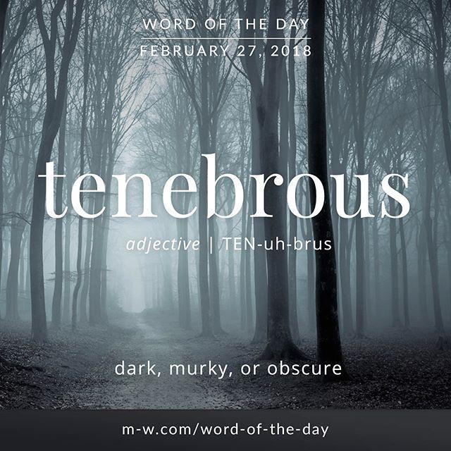 Today's #wordoftheday is 'tenebrous' . #language #merriamwebster #dictionary