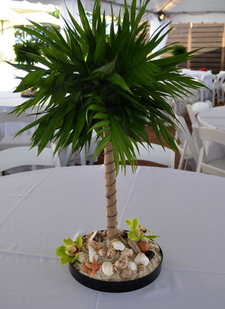 Pin by elaine schumacher on rehearsal dinner centerpieces for Palm tree decorations for the home
