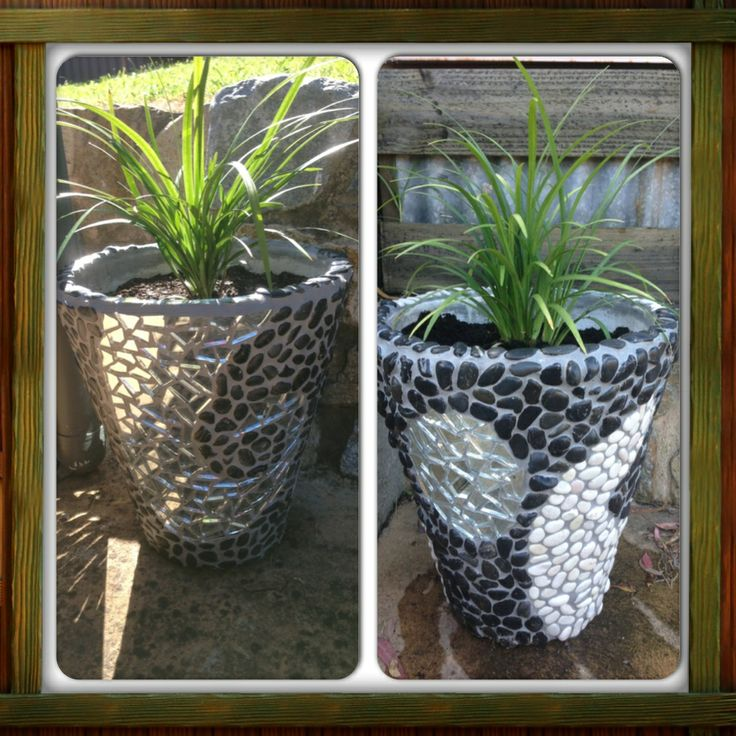 My mosaic pots with plants