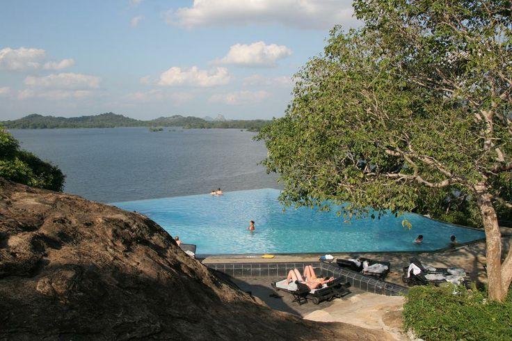 17 best images about heritance kandalama sri lanka on for Kandalama hotel sri lanka