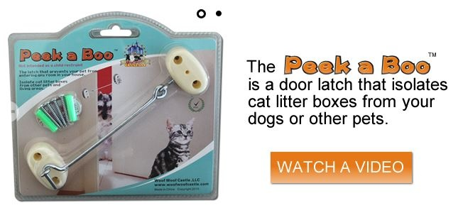 How to keep the dog out of the litter box