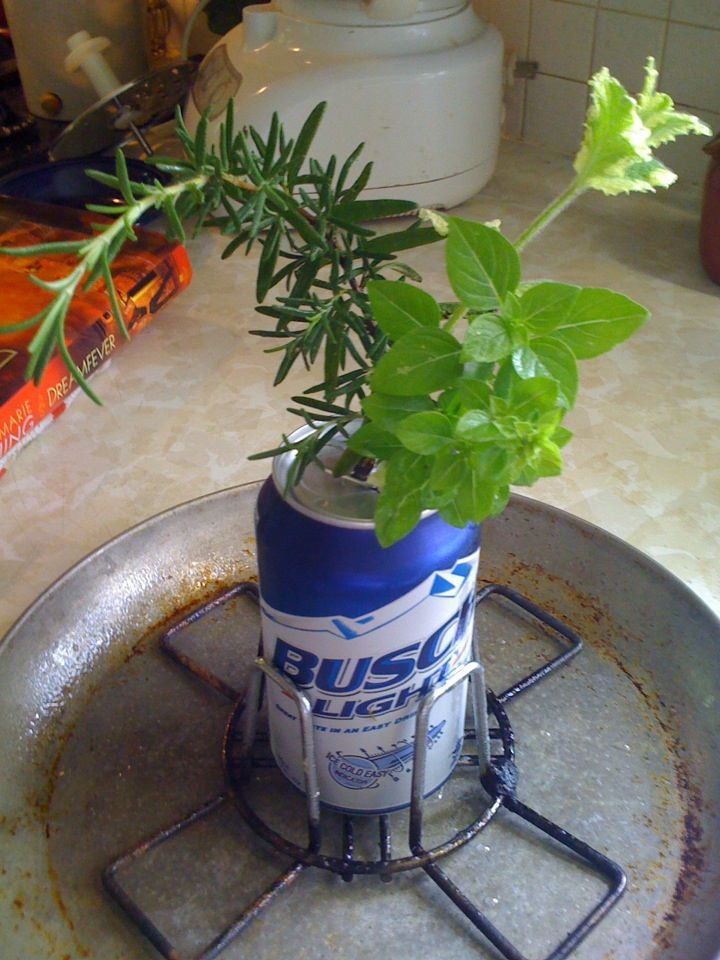 Bouquet being used for the beer butt chicken. Of course you have to drink part of the cheap beer first :-). Organic rosemary, basil and pineapple sage were stuffed in the can and then the chicken was placed over....oven roasted or can be grill roasted.