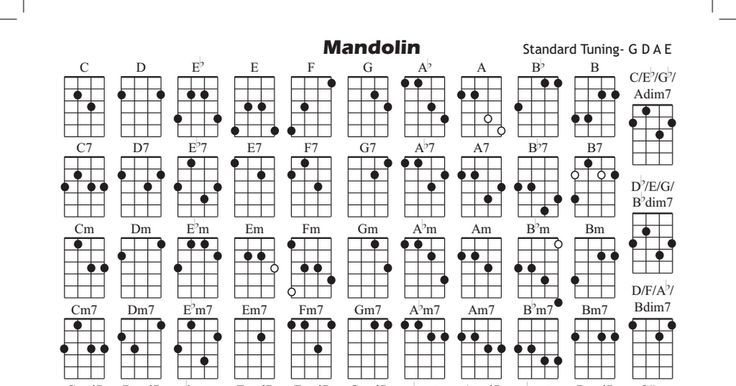 Banjo : tenor banjo chords gdae Tenor Banjo Chords at Tenor Banjou201a Tenor Banjo Chords Gdaeu201a Banjo